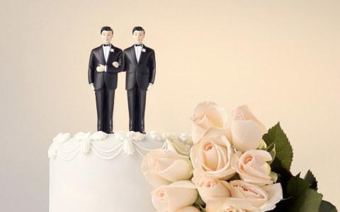 Mariage gay : la procréation assistée divise la gauche
