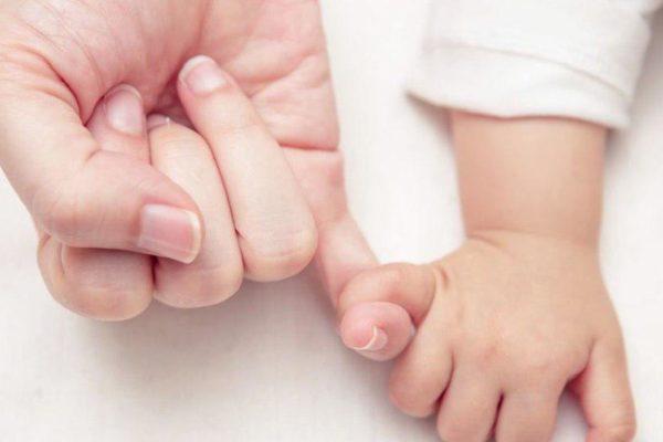 Le greffe d'utérus et le greffe de l'endomètre – lequel est plus efficace?