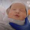 La maternité de substitution: les bébés attendent leurs parents